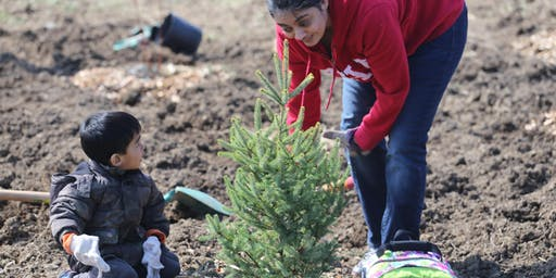 Fall Tree  and Shrub Planting at Claireville Conservation Area