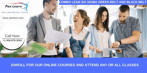 Combo Lean Six Sigma Green Belt and Black Belt Certification Training In Carmichael, CA