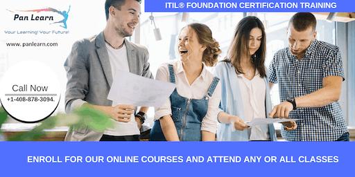 ITIL Foundation Certification Training In Elk, CA