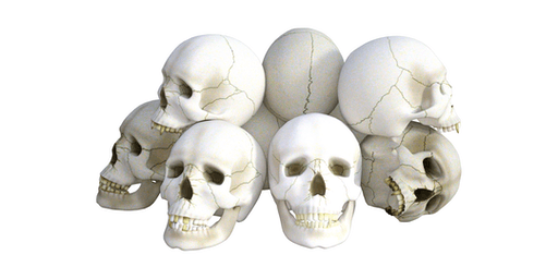 Osteopathy in the cranial field reloaded 6-7 June 2020
