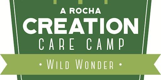 Wild Wonder Vacation Bible School 2019