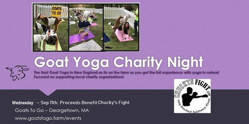 Charity Goat Yoga for Chucky's Fight