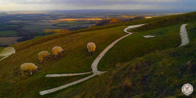 Escape the City to the Wessex Downs
