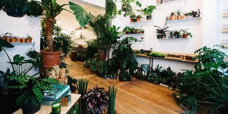 Atelier soin de plantes billets