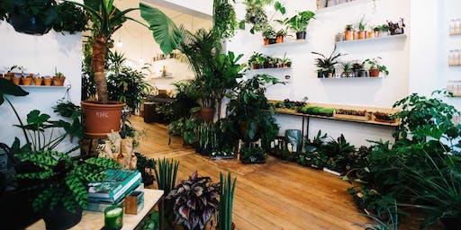 Atelier soin de plantes