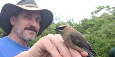Migration & the Science of Bird Banding