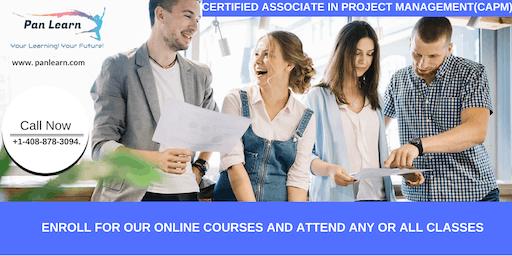 CAPM (Certified Associate In Project Management) Training In Jamestown, CA