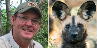 Peter Blinston: The Painted Dogs of Zimbabwe