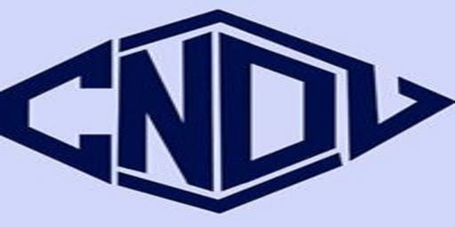 CNDL(College Notre Dame De Lourdes) Class of 1992 - Class Reunion