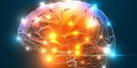 PT2B Experience Project: Meghen Flaig PT, DPT presents Pain Neurocience tickets
