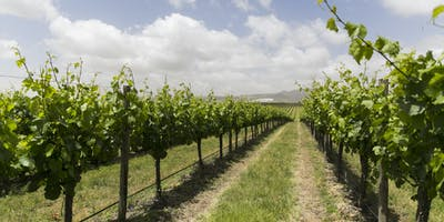 Wine Australia Licensing and Approval System (WALAS) training (Margaret River)