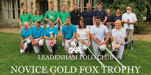 Novice Gold Fox Trophy