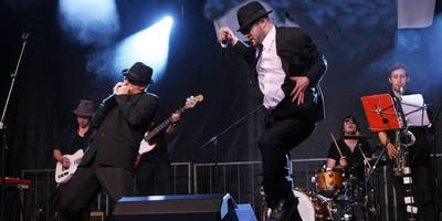 Live Music - The Chicagoland Blues Brothers