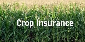 Advanced Crop Insurance Coverage & Farm Bill Seminar (Coffee and Snacks Provided)