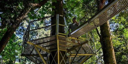 UBC GreenHeart Tree Walk