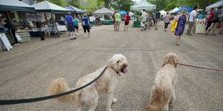 Downtown Easton Walking Tour presented by Mountain View Kennels Boarding & Grooming tickets