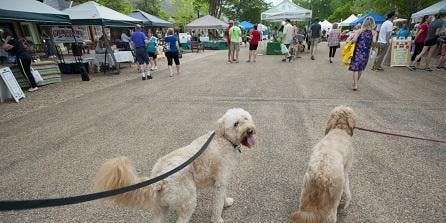 Downtown Easton Walking Tour presented by Mountain View Kennels Boarding & Grooming