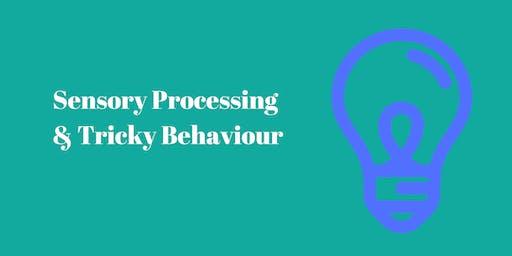Sensory Processing and Tricky Behaviour