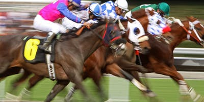 """Horses For Courses""  Course on Horseracing"