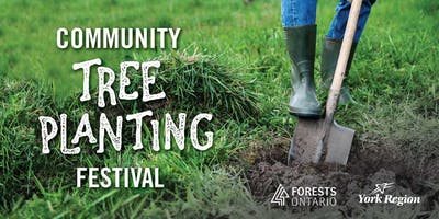 Community Tree Planting Festival - York Region