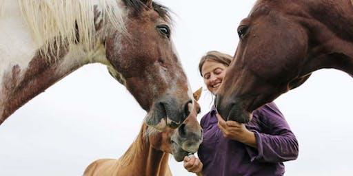 Raindrop Technique® für Pferde