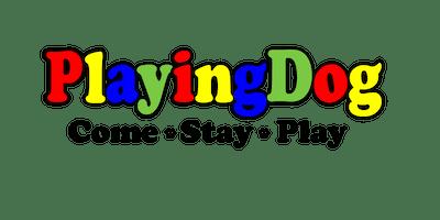 PlayingDog Vendor Registration