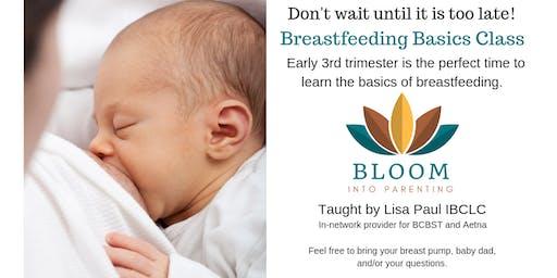 Bloom Into Breastfeeding Basics 2019 schedule