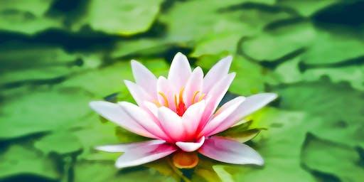 Mindfulness and Reiki Share
