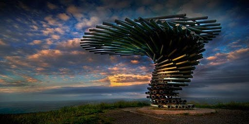 Panopticon Nightrunner: Singing Ringing Tree (12km)