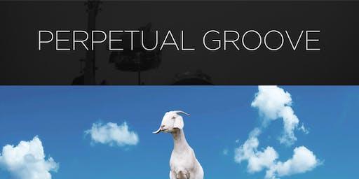 Perpetual Groove / Marvelous Funkshun