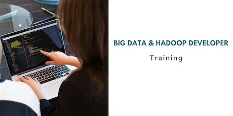 Big Data and Hadoop Administrator Certification Training in Iowa City, IA tickets