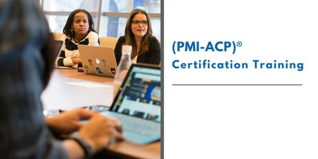 PMI ACP Certification Training in c tickets