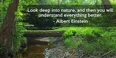 Nature Based Therapy 1 day workshop tickets