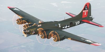 The Magnificent 7 WWII Vintage Warbird Expo 2019