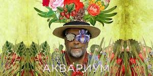 """Акустический концерт группы """"Аквариум"""" 19 мая"""