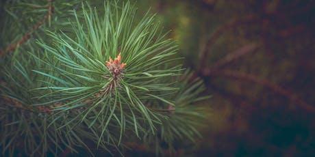 Botany at Bakethin Reservoir tickets