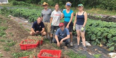 2019 Redfearn Farm Work Day