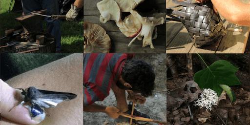 Reeds & Roots Skillshare 2019