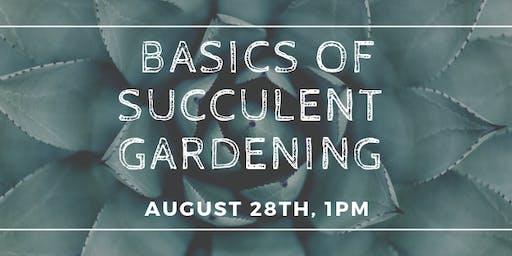 Basics of Succulent Gardening