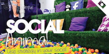 Social Animal Course | Learn how to maximise your social media efforts. tickets