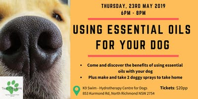 Using Essential Oils for Dogs