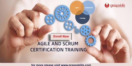 Agile and Scrum Training Course in Quebec,Canada