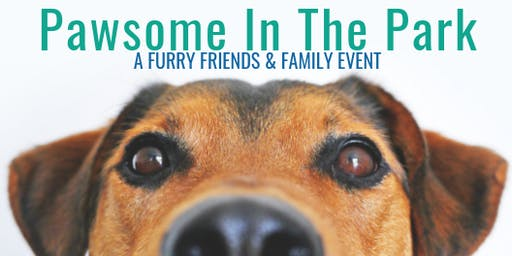 Pawsome In The Park - Kernersville