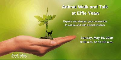 Animal Walk and Talk