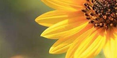 Alachua County Master Gardener Volunteer Information
