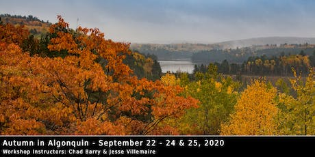 Autumn in Algonquin 2020 - Photo Workshop with Chad Barry & Jesse Villemaire tickets