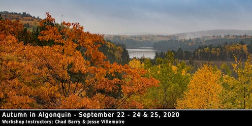 Autumn in Algonquin 2020 - Photo Workshop with Chad Barry & Jesse Villemaire