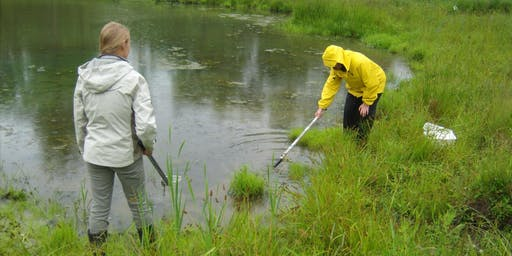 Annual Monitoring at Depot Creek Nature Reserve