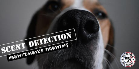 Scent Detection Maintenance Training tickets