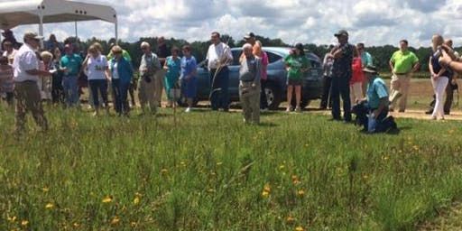 Wildflower Trails of Mississippi Field Day